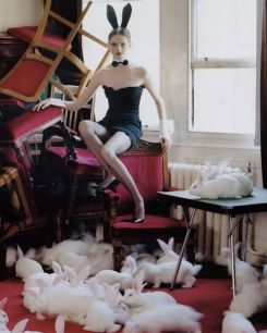 Tim Walker via @Idsetters